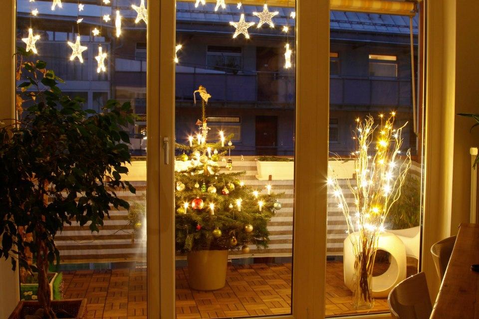 die gr ne alternative lebende christb ume weihnachtsfeiern m. Black Bedroom Furniture Sets. Home Design Ideas