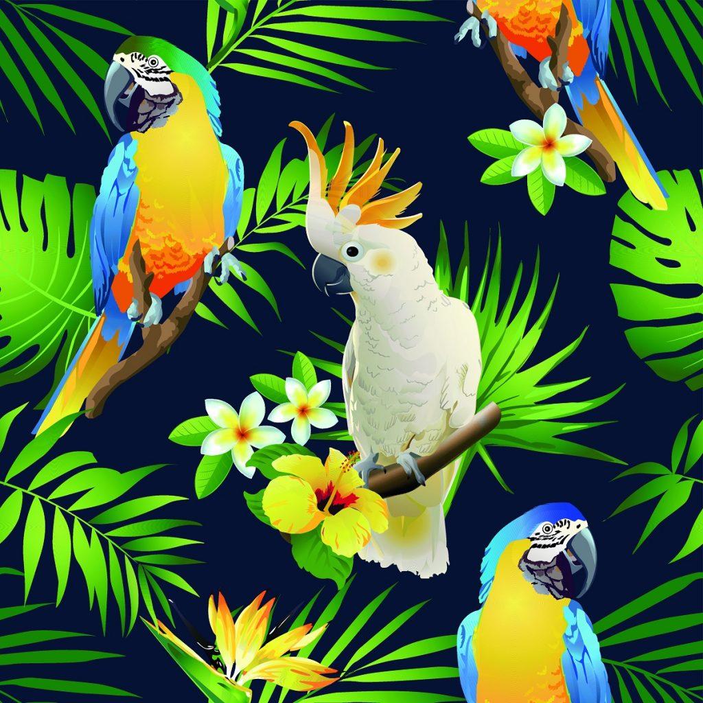Eine karibische Weihnachtsfeier: verschiedene Papageien und karibische Blumen vor dunklem Hintergrund